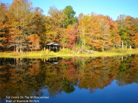 Autumn along the Withlacoochee River in autumn offers breathtaking foliage and serene beauty.